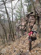 Rock Climbing Photo: The lower end of Rattlesnake Ridge