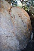 Rock Climbing Photo: Peppertree Boulder Left Topo