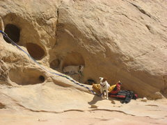 Rock Climbing Photo: Dog Bivouac .. Seems we are always waiting for the...