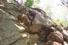 Rock Climbing Photo: Joey on 'No Midgets'