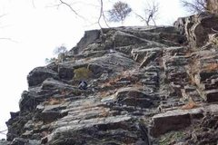 Rock Climbing Photo: Gonzo just below the belay ledge tree