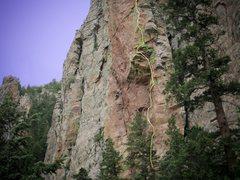 Rock Climbing Photo: Showing line of The Mudshark Arpeggio