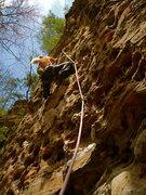 Rock Climbing Photo: Tara on Sunshine.
