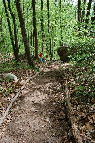 Rock Climbing Photo: New trail and in the forground you can see the Jel...
