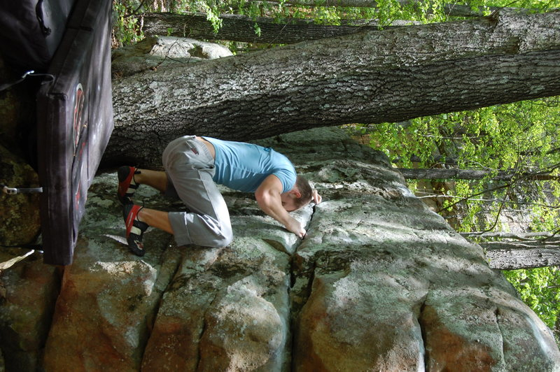 Rock Climbing Photo: Yella Fever