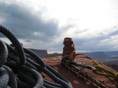 Rock Climbing Photo: One of Gothic Nightmares inhabitants.