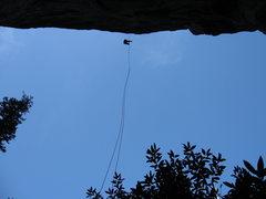 Rock Climbing Photo: The 200 foot rap of Pangaea, Sonora Pass.