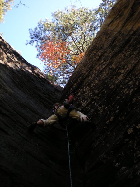 Rock Climbing Photo: Stemming on Stems and Seeds