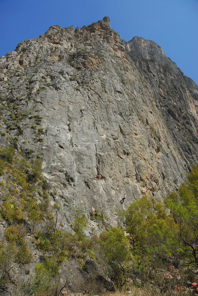 The Mota Wall