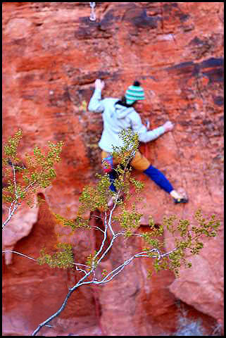 Rock Climbing Photo: Carapace