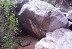 Rock Climbing Photo: Xenomorph, V8.