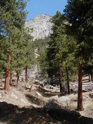 Rock Climbing Photo: Approach in ravine to east of Della Terra property...