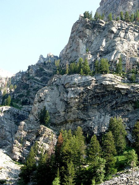 Rock Climbing Photo: The route starts on the ledge with the tree near t...