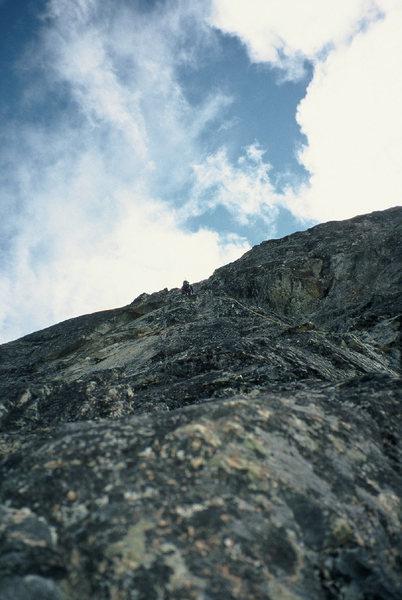 Fern leading on Raised By Bears during the first ascent. The solid but licheny rock is pretty characteristic of the route.