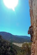 Rock Climbing Photo: Kai Huang on Cactus Drop, 10d, Shelf Road, CO. Pho...