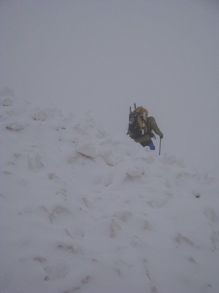 Tom crossing avalanche field