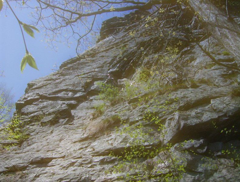 Rock Climbing Photo: In this photo: pitch 1 of Osprey. Climber is negot...