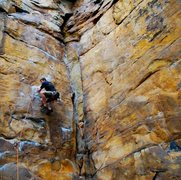 Rock Climbing Photo: High Steppin' into the crux of Exoduster.