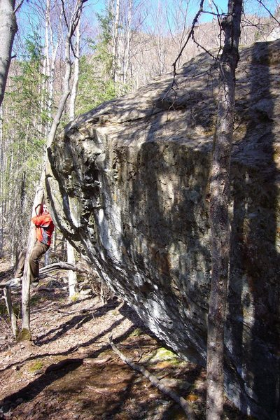 Rock Climbing Photo: Cleaning For New FAs