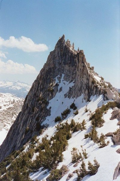 Rock Climbing Photo: Cathedral Peak in early summer of a late snow seas...