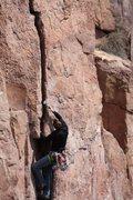 Rock Climbing Photo: Chris on Laceration Jam  Photo: Travis Hibbard