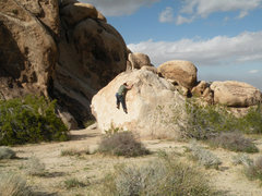 Rock Climbing Photo: Messing around at Indian Cove, JTree.