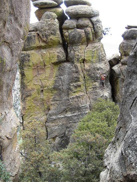 Brianna Averill climbing the pooch.