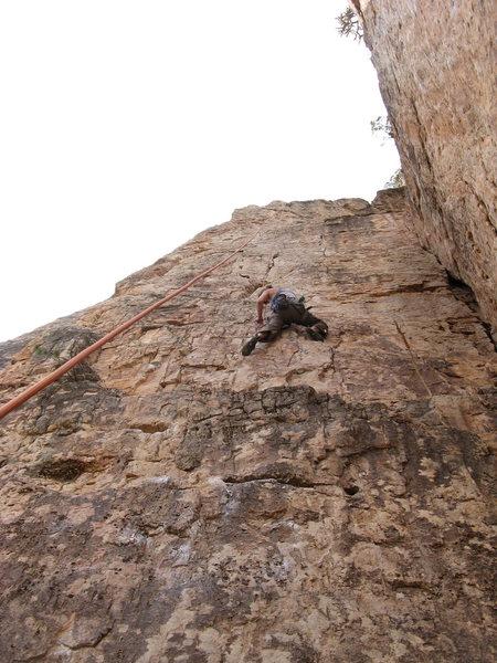 Rock Climbing Photo: Margo on Suburbia