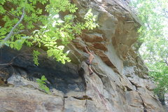 Rock Climbing Photo: Bradley clipping the second draw. Note the knee ba...