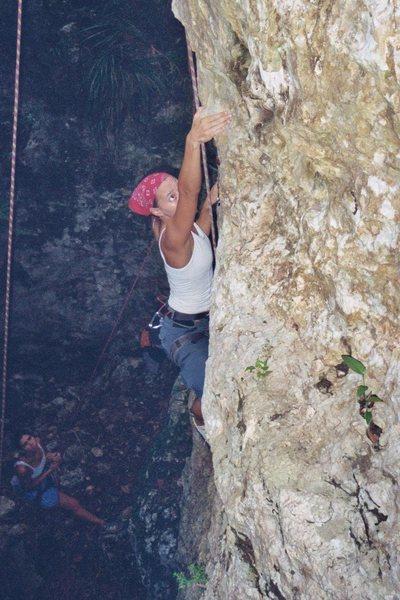 Rock Climbing Photo: limestone in a moist climate means vegitation grow...