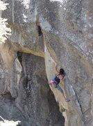 Rock Climbing Photo: Helen on the flake edges of Bobcat Martini.