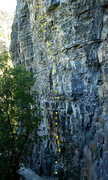 Rock Climbing Photo: Running Woman