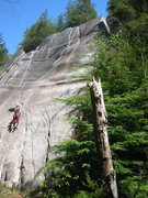 Rock Climbing Photo: Unknown climber on the start of September Song.  T...