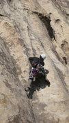 Rock Climbing Photo: 5.7 at Playhouse Rock J-Tree