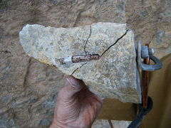 Rock Climbing Photo: That's what bolts look like on the inside. 3rd bol...