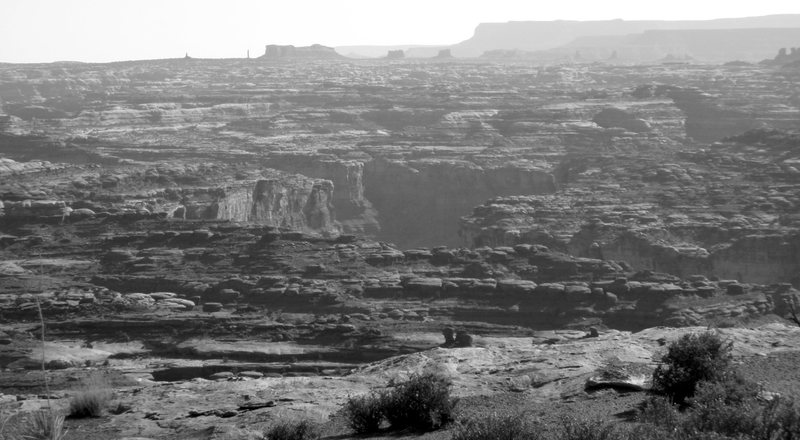 from the white rim road. what needle is that?!
