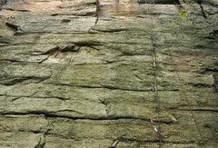 Rock Climbing Photo: gear on the lower half