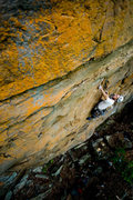 Rock Climbing Photo: Will Eccleston leading Orange Crush. Photo: Andrew...
