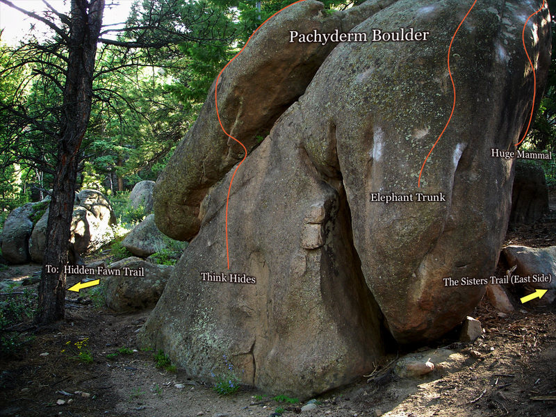 Rock Climbing Photo: A tree top shot of the Pachyderm Boulder.