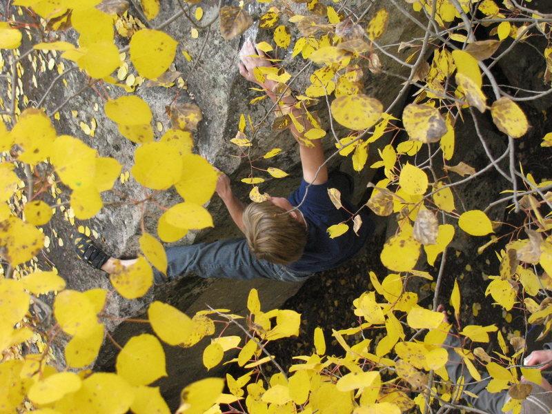 Rock Climbing Photo: Skyland in the Fall.
