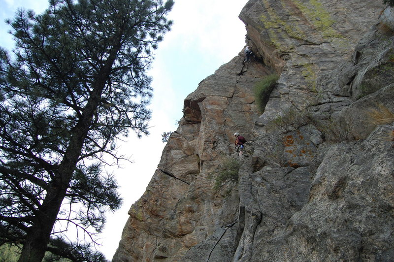 Matt Bolt on a potential first ascent, belayed and seconded by Sean Wolf. <br> <br> This gives a little perspective on the angle. The tree in this photo actually grows at an angle. The photo is upright, just look at the belayer. <br> <br> Photo by Mike Johnson