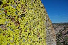 Rock Climbing Photo: Vibrant lichen on the rim of the gorge