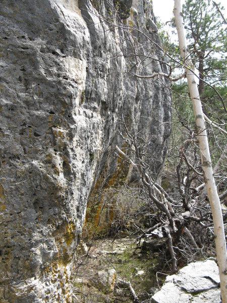 Rock Climbing Photo: limestone in Nemo