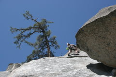 Rock Climbing Photo: Nathan Fitzhugh preparing to mantle the knob on Th...