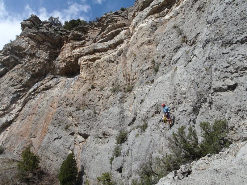 Rock Climbing Photo: Perin bolting.