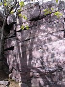Rock Climbing Photo: Climb up into hand crack.