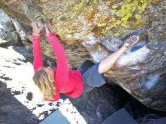 Rock Climbing Photo: Ashley Gann on Tommy's Arete.