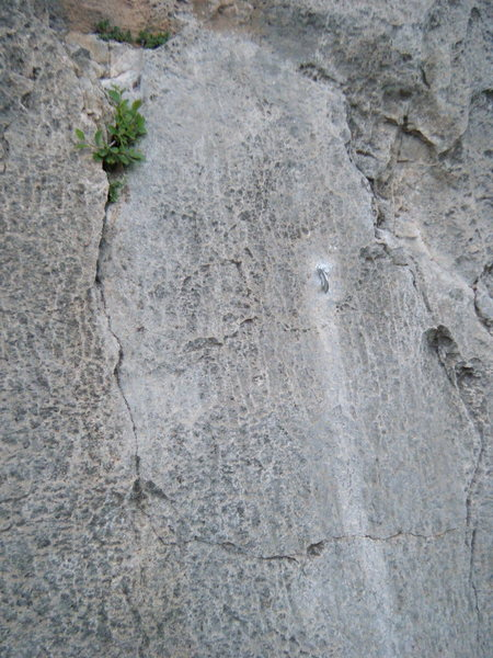 Rock Climbing Photo: The third bolt on NoName 4.5 (an unknown 5.9), pla...
