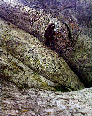 Rock Climbing Photo: John Doe 3