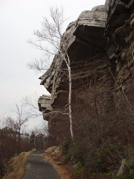 Rock Climbing Photo: Minnewaska